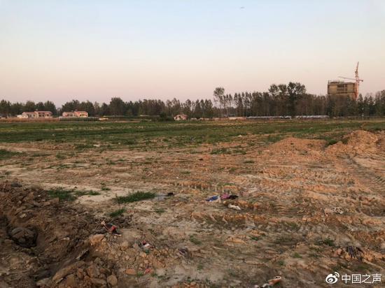 图2:9月3日,曹集乡政府将王楼村耕地铲平,铲车钩机留下的车轮印至今仍清晰可见。