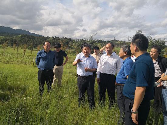 督察组现场检查华侨城高尔夫球场侵占阳宗海一级保护区问题整改情况。