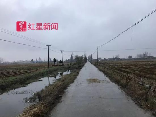 ▲通往西南村吴家老房子的水泥路。
