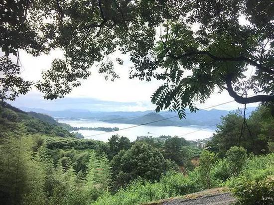 章子欣家门口的小路上能看到千岛湖。澎湃新闻