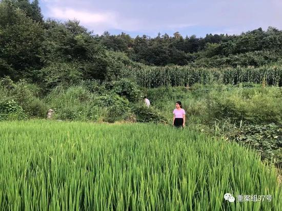 富达国际:中国居民养老意识有所提升