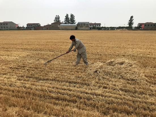 31省份经济年报: 南北分化明显 粤苏GDP跨过9万亿