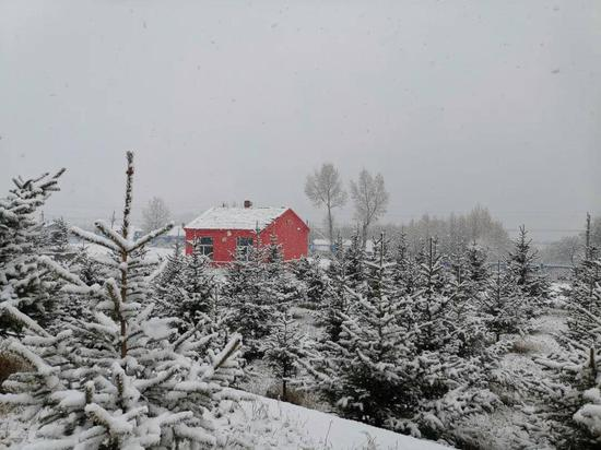 10月21日,内蒙古自治区呼伦贝尔市迎来入冬以来第一场大周围降雪天气过程 图片来源:中国气象局