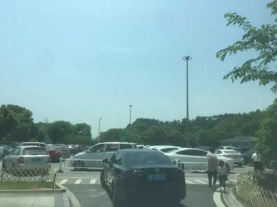 杭州男司机刚上高速就惊呆了:服务区已爆满,车子都停不进了!