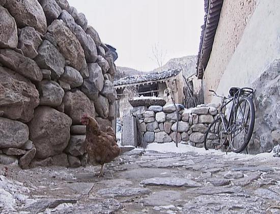 △骆驼湾村的小路多用石头铺砌而成,坑坑洼洼,凹凸不平。