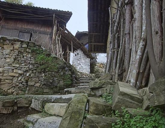 △潮湿的气候给村里的石阶披上了一层湿滑的青苔。