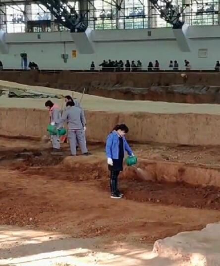 網友拍到兵馬俑俑坑內被澆水 工作人員:能防塵