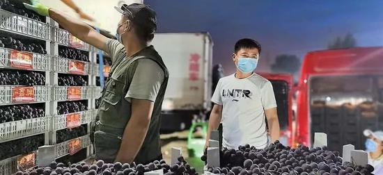 在新发地批发市场临时交易区,经营户正在搬运葡萄。受访者供图