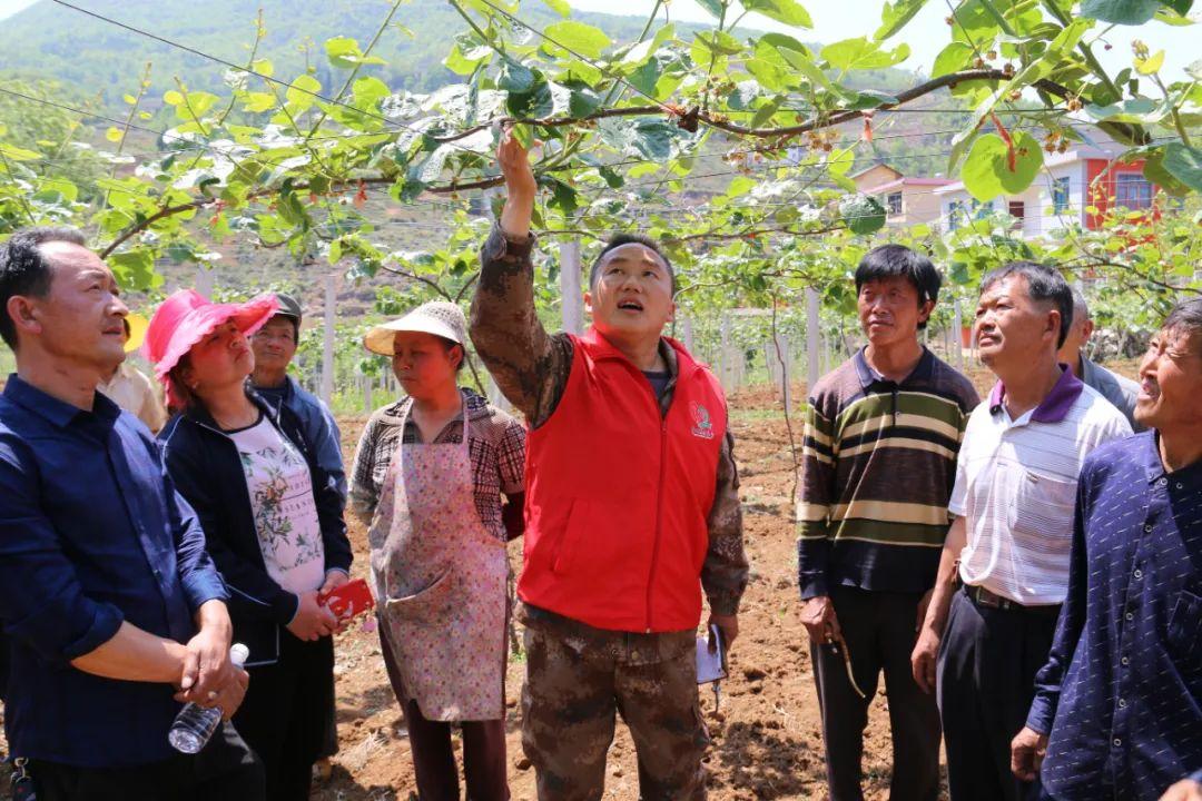 青年志愿者在贵州扶贫一线给村民讲解农技知识