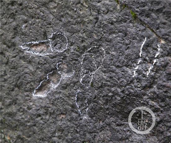 我国首次发现侏罗纪早期肉食龙足迹化石