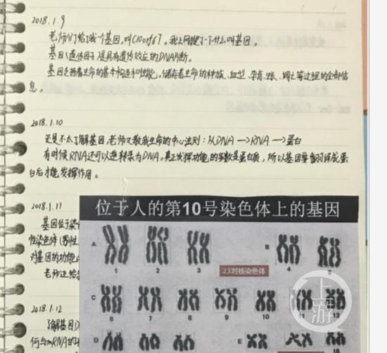▲陈某石同学基因实验通知中的有关实验纪录。图片来源/全国青少年科技创新大赛官网