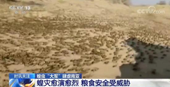 图片来源:央视新闻视频截图