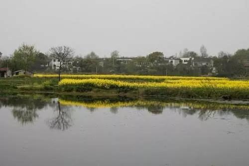 怀宁县查湾村