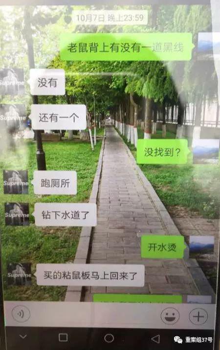 ▲陈浩与微信父亲座谈时称宿弃有老鼠。   受访者供图