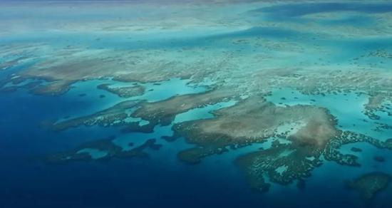 今年2月,因气候变化导致海水温度过高,澳大利亚国宝级旅游景点大堡礁发生5年内第3次大面积白化。图/FRANCE 24 English视频截屏