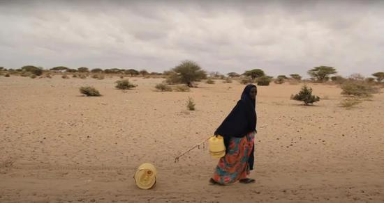肯尼亚牧民拉着一只水桶去打水。图/爱尔兰红十字会