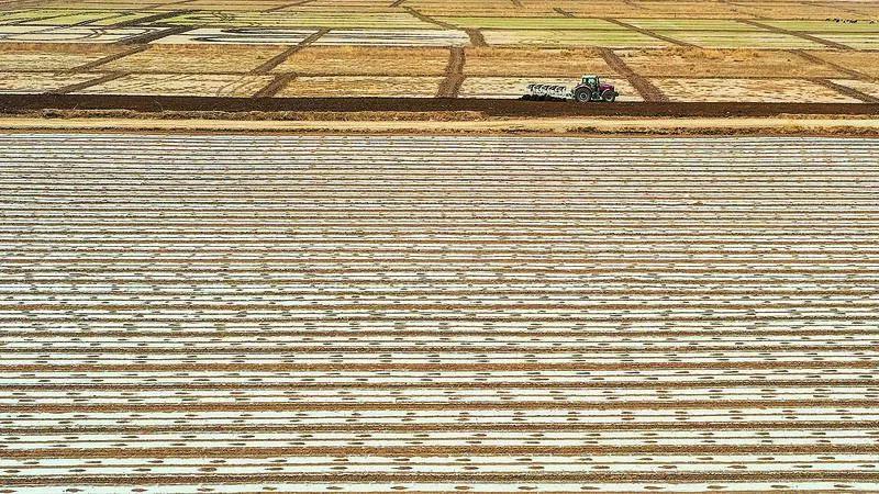 新疆喀什地区巴楚县农民用机械犁地。来源:GJ