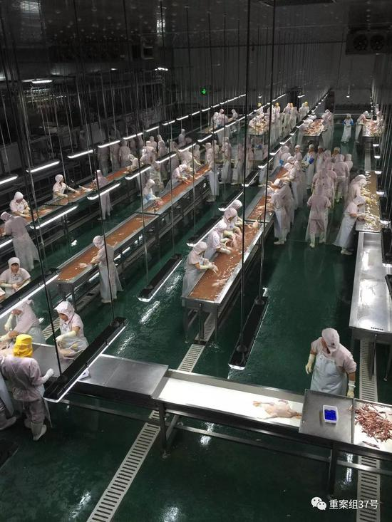 ▲中澳集团此前生产车间 。受访者供图