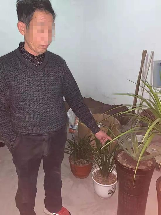 民警在朱某家中共找到7盆失窃的盆栽