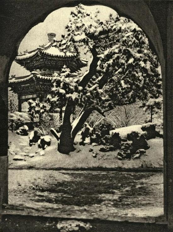 中山公园雪景