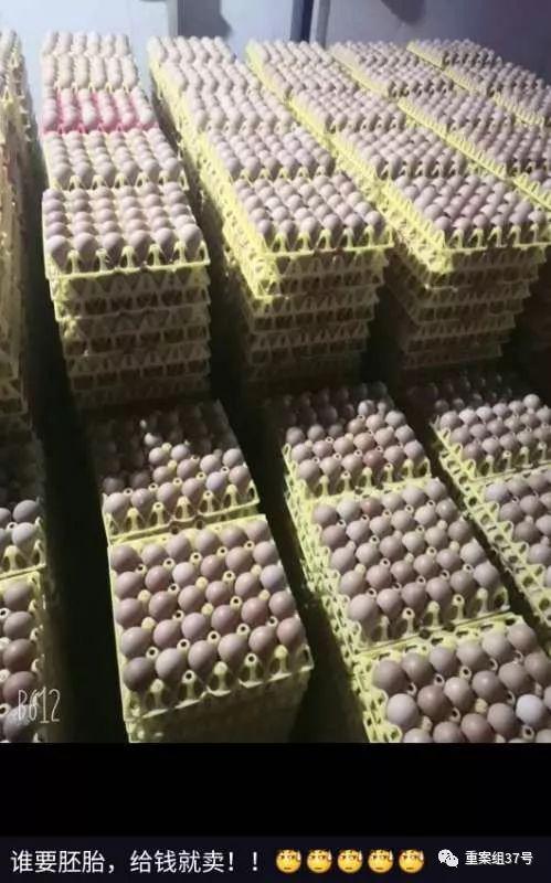 """▲鸡蛋积压在仓库内。1月26日,陈明发友人圈称""""给钱就卖""""。网络截图"""