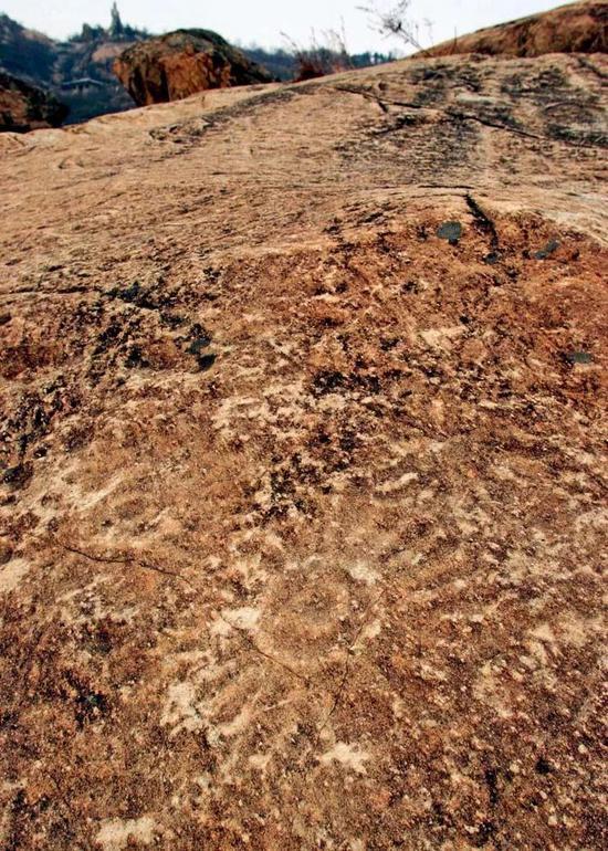 江苏连云港将军崖,远古石刻遗迹太阳图。