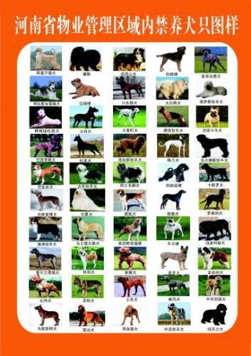 河南省物业管理区域内禁养犬只图样。 河南省公安厅 摄