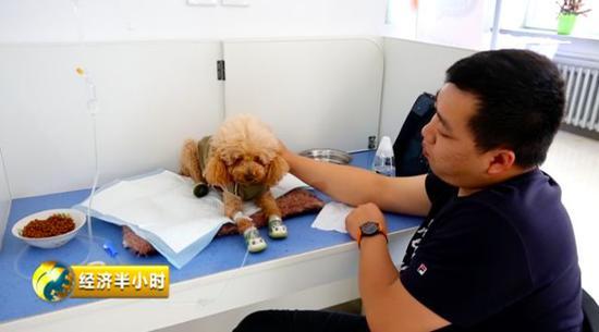 黑龙江鸡西某宠物医院