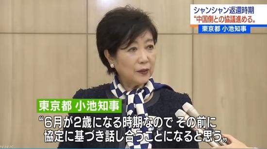 东京都知事幼池百相符子批准采访(NHK电视台截图)