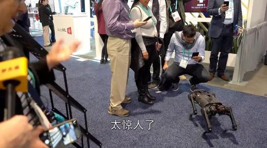 ▲人们围着中国制造的机器狗拍照(视频截图)