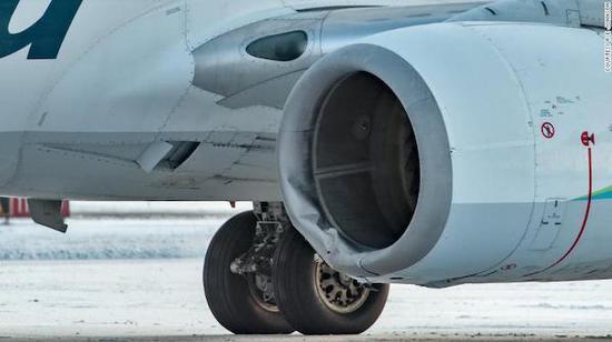由于不料撞击棕熊而受损的飞机左引擎罩
