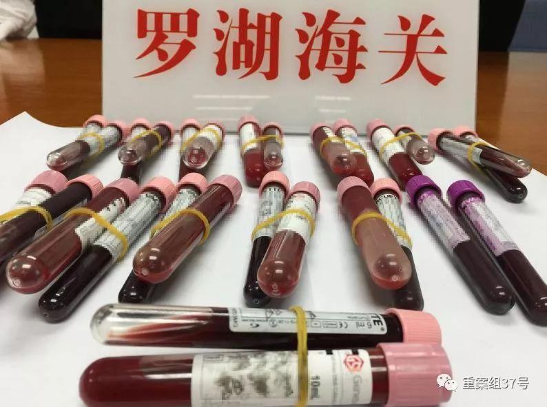 ▲深圳罗湖海关截获的部分人体血液样品。罗湖海关 供图