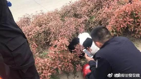 群众报警发现熊猫 民警兴奋出警结局令人意想不到