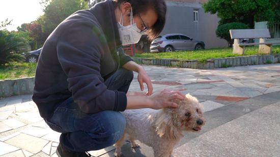 """家里的小狗""""中秋""""和敖慕麟是同一天生日,父亲生前每天傍晚都带着""""中秋""""下楼玩。新京报记者 解蕾摄"""