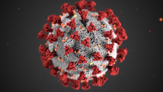 新冠病毒(图源:美国疾控中央官网)