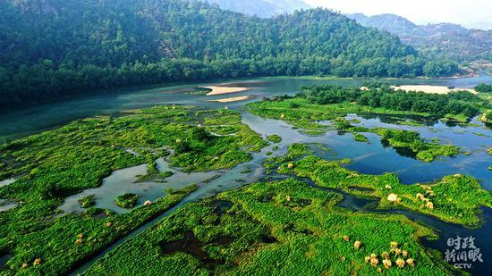△浙江台州,永安溪生态湿地公园。(图/视觉中国)