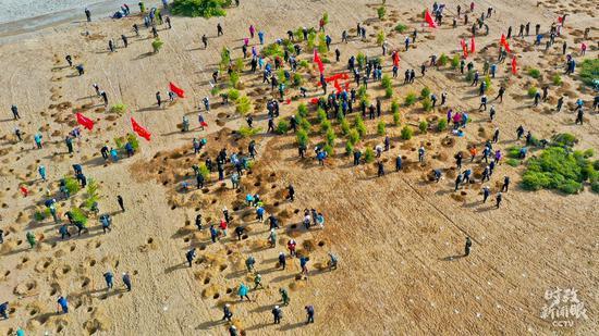△4月15日,甘肃张掖万亩常青林基地植树现场。(图/视觉中国)