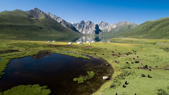 位于青海省果洛藏族自治州久治县的年保玉则。2016年,三江源国家公园作为我国第一个国家公园体制试点启动,这一地区生态保护从原来的应急式保护向常态化、持续性保护升级。