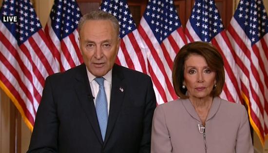 国会两院民主党领袖回应特朗普讲话。(视频截图)