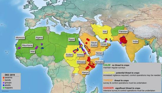 2019-2020年的蝗災事件,足夠顯現出蝗群驚人的擴散能力 |?www.fao.org