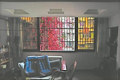 """记者在梁女士朝西北方的住所里看到,厨房、客厅和卧室都被绯红色的花苞片""""装点""""。"""