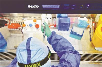 生物坦然柜是实验室内最重要的设备,余红将双手伸入其中操作挑取核酸