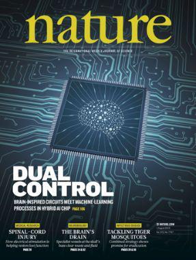 中国类脑芯片首登《自然》封面 外媒热议