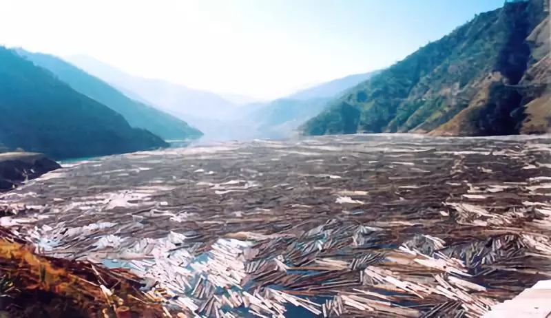 ▷在木材水运时代,木材密密麻麻漂浮在江面上