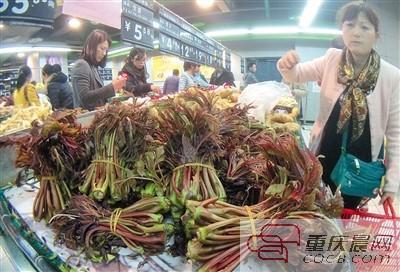 超市农贸市场随处都能见到椿芽的身影,它是重庆主城春天市民餐桌上最受欢迎的野菜之一。重庆晨报记者 杨新宇 摄