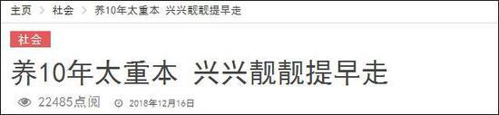 马来西亚《中国报》截图