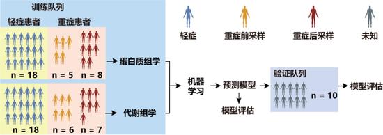 实验设计及流程