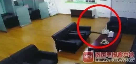 新闻资讯-免费yoqq银行员工正开会,天花板突然掉下大蟒蛇,视频慎点yoqq资源(3)