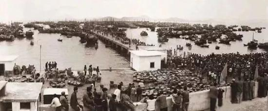 △1979年的深圳蛇口,照样一个冷僻芜秽的幼渔村