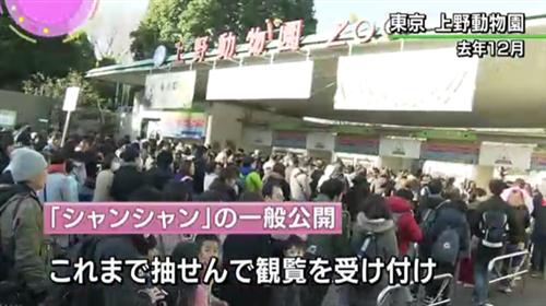 """上野动物园门口,人。们排长队等着望""""香香""""(NHK电视台截图)"""